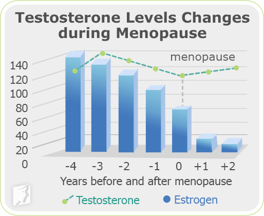 Testosterone levels changes during menopause
