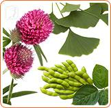 Alternative Treatments for Menopause3