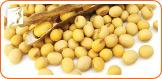 Soy helps to reduce night sweats.