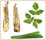 Why Choose Herbal Treatments for Menopause? 2