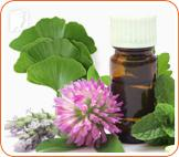 Herbal remedies are a common way to help menopause symptoms.