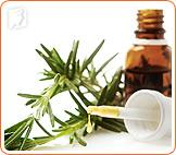 Herbal Treatments for Menopause Symptoms