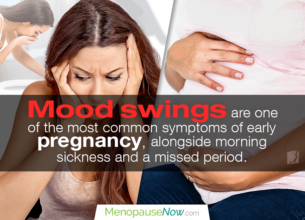 What is the meaning of mood swings