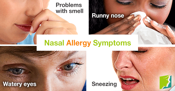 the symptoms and treatment for rhinitis Rhinitis, also known as coryza, is irritation and inflammation of the mucous membrane inside the nose common symptoms are a stuffy nose, runny nose, sneezing, and.