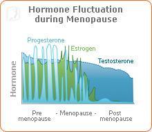 natural-menopause-symptoms-1