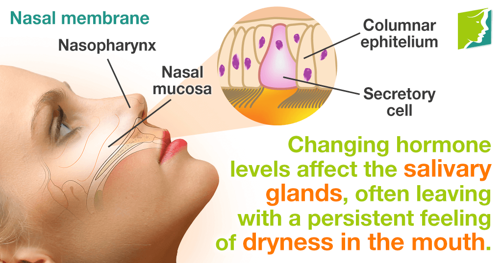 Changing hormone levels affect the mucus membranes, which result in dry mouth.