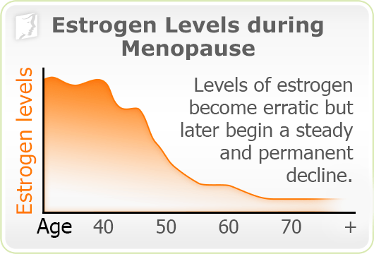 Graph: Estrogen levels during menopause