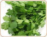 Parsley: It´s fluoride levels help against bone thinning and osteoporosis