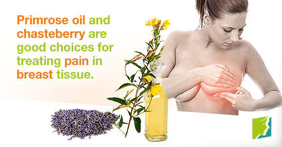 Primrose oil and chasteberry are good choices for treating pain in breast tissue.