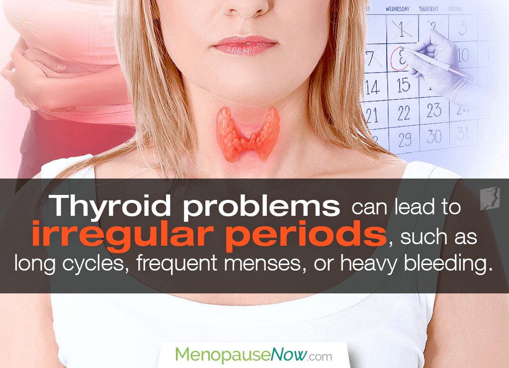 Thyroid problems can lead to irregular periods, such as long cycles, frequent menses, or heavy bleeding