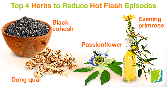 Top 4 Herbs to Reduce Hot Flash Episodes