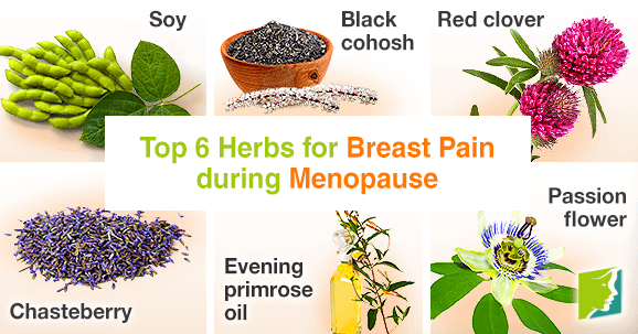 Top 6 herbs for breast pain during menopause