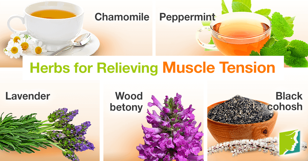 Herbs for relieving muscle tension