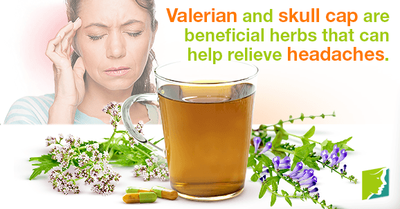 Valerian and skull cap are beneficial herbs that can help relieve headaches.