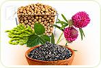 Uncommon Treatments for Menopause Symptoms