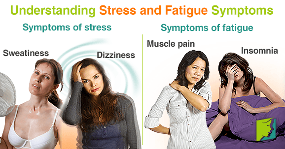 Understanding Stress and Fatigue Symptoms