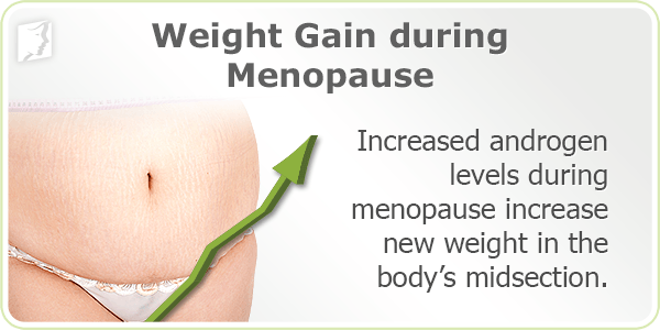 Weight gain during menopause fat calories