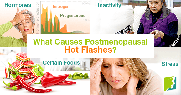 What Causes Postmenopausal Hot Flashes?